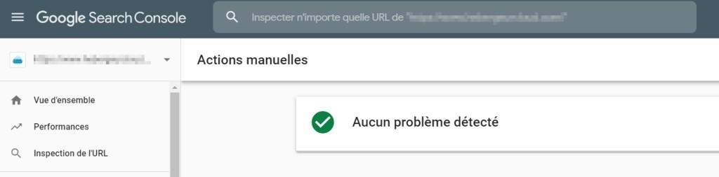 Pas d'action manuelle dans Google Search console