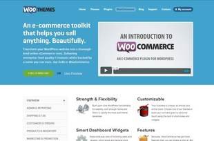 WooCommerce extension wordpress ecommerce