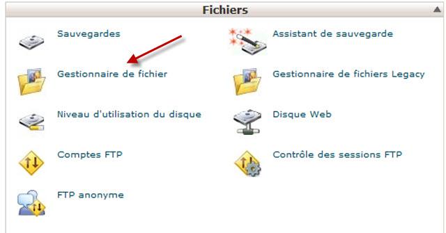gestionnaire de fichier dans cPanel