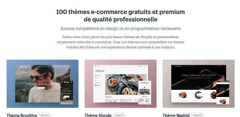 themes-shopify-ecommerce